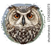 owl. realistic  artistic  color ... | Shutterstock .eps vector #1724202073