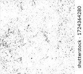 vector splatter grunge... | Shutterstock .eps vector #1724364280