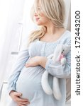 portrait of the young pregnant... | Shutterstock . vector #172443200