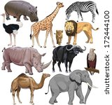 Wild Animals From African...