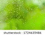 Green Trees Behind Glass Window ...