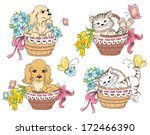 cat and dog in basket. idea for ...