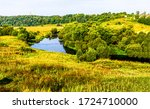 Small photo of Summer green nature scene view