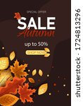 autumn sale vector background.... | Shutterstock .eps vector #1724813296