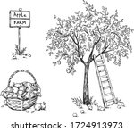 apple tree with a ladder and a... | Shutterstock .eps vector #1724913973