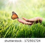 Stock photo butterfly in hand on grass 172501724