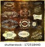 calligraphic design elements | Shutterstock .eps vector #172518440