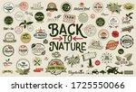 organic food  farm fresh and...   Shutterstock .eps vector #1725550066