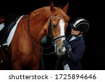 Portrait Of A Red Dressage...