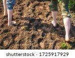 Walking Barefoot Through Muddy...
