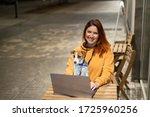 Smiling Woman Working On Laptop ...
