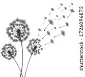 Vector Illustration Dandelion...