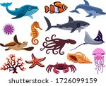 Set Of Sea Creatures. Isolated...