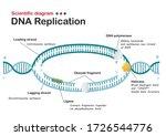 science diagram show dna... | Shutterstock .eps vector #1726544776