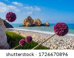 Landscape Of The Coast Of...