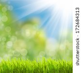 green grass over sunlight  | Shutterstock . vector #172684313