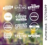 spring typographic design set | Shutterstock .eps vector #172703699