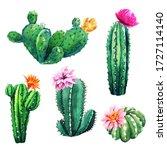 Watercolor Set Of Cactus Plants ...