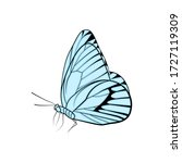 butterfly isolated colorful... | Shutterstock .eps vector #1727119309