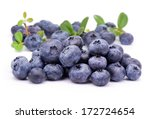 blueberry  with green leaves  | Shutterstock . vector #172724654