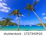 Uplifting Caribbean View Of...