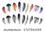 Set Of Watercolor Feathers Of...