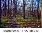 The Buckeye Trail at Pike Lake, Ohio