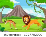 The Lion Is Chasing An Impala...