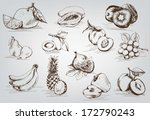 compilation of vector sketches... | Shutterstock .eps vector #172790243