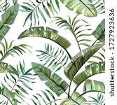 exotic tropical banana  fern... | Shutterstock .eps vector #1727923636