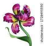 Digital Botanical Illustration...