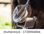 Small photo of Horse farrier at work - trims and shapes a horse's hooves using rasper and knife. The close-up of horse hoof.