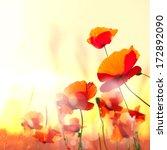 poppy | Shutterstock . vector #172892090
