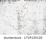 old white marble texture  with... | Shutterstock . vector #1729135120