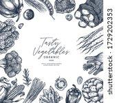 farm vegetables on white... | Shutterstock .eps vector #1729202353