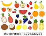 doodle harvest  citrus  avocado ... | Shutterstock .eps vector #1729223236