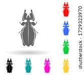 beetle multi color style icon....