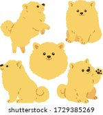 set of flat colored pomeranian... | Shutterstock .eps vector #1729385269