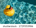 Yellow Rubber Duck Floating On...