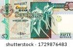 Seychellois  Shield  Giant...