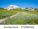 Snowy Mountain Peak And Field...