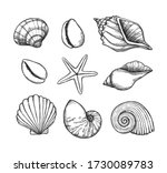 Hand Drawn Vector Illustrations....