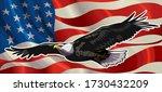 American Redoubtable  Eagle...