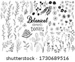 Black Hand Drawn Floral And...