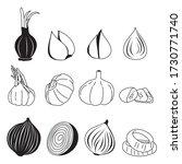 onion bulb vector set. food... | Shutterstock .eps vector #1730771740