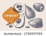 hand drawn loquat or mushmula.... | Shutterstock .eps vector #1730957059