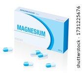 magnesium supplement pills box  ...   Shutterstock .eps vector #1731225676