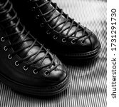 a pair of shoes  close photo on ...   Shutterstock . vector #1731291730