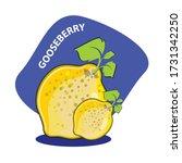 gooseberry clip art.in the... | Shutterstock .eps vector #1731342250