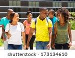 happy african american college...   Shutterstock . vector #173134610